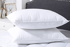 Spirit Microfiber Pillow Bundle of 2  - Click for more details